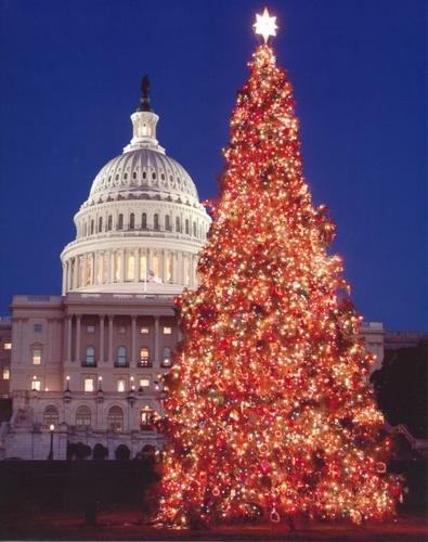 Новый год в америке как празднуют